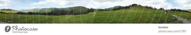 Allgäu-Panorama Himmel Baum Ferien & Urlaub & Reisen Wiese Gras Berge u. Gebirge Frühling Landschaft wandern groß Panorama (Bildformat) Pflanze