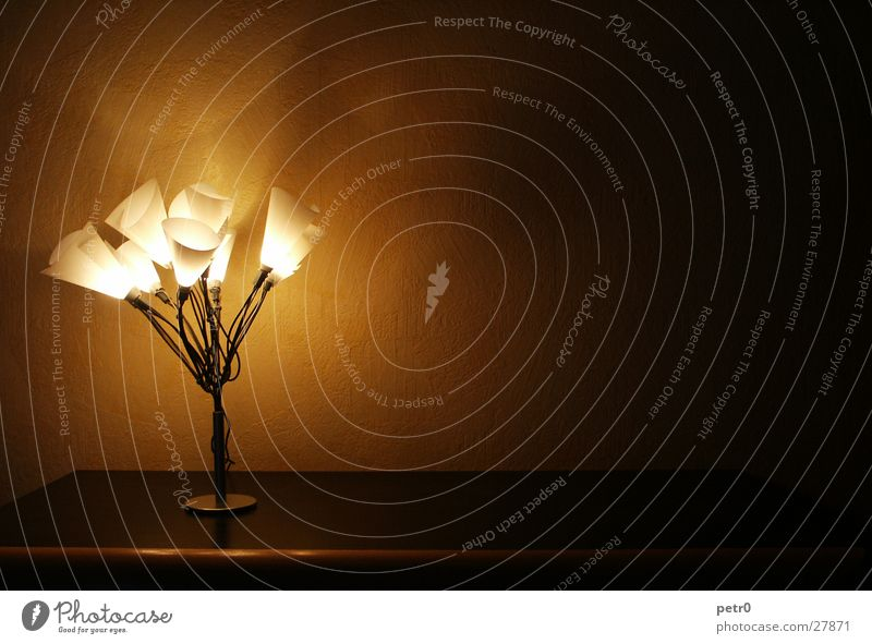 Ein Strauß warmes Licht Lampe dunkel Wand Beleuchtung Wohnung Kabel Häusliches Leben Tapete Draht Scheinwerfer Schrank Lampenschirm