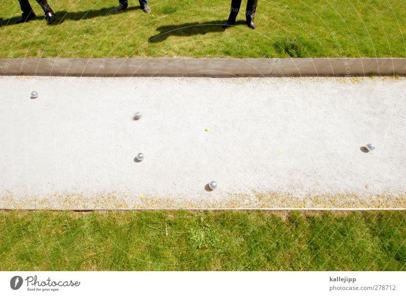 ruhige kugel schieben Mensch Mann Erwachsene Wiese Spielen Park planen Ziel Ball Kugel Sportveranstaltung Bahn 30-45 Jahre Bowling