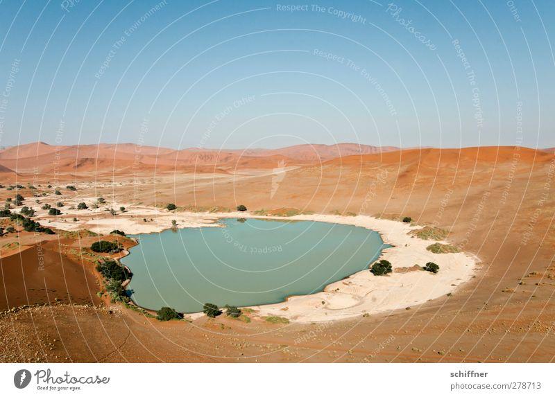 Badewanne für alle! Umwelt Natur Landschaft Urelemente Wolkenloser Himmel Wüste trocken rot Sand Düne Stranddüne Ferne Ödland Einsamkeit Wasser Meerwasser