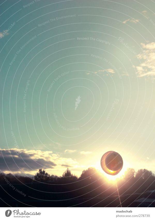 DIY-Sonnenfinsternis Umwelt Natur Landschaft Himmel Wolken Sonnenlicht Sommer Klima Wetter Schönes Wetter Wald frech heiß schön Kitsch Wärme Stimmung ästhetisch