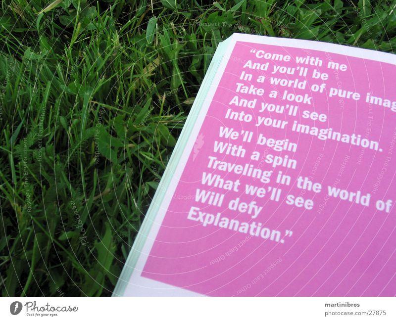 lektüre im freien Buch rosa Gras Park lesen Erholung Sommer Bildung Buchstaben Freizeit & Hobby Schriftzeichen Kontrast Außenaufnahme