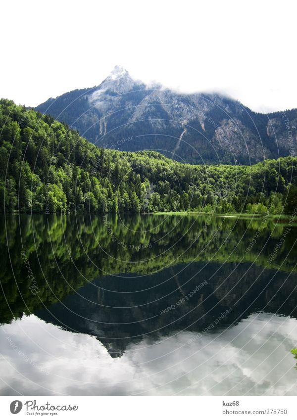 Allgäu Natur Wasser Ferien & Urlaub & Reisen grün Sommer Baum Wolken ruhig Wald Erholung Landschaft Berge u. Gebirge See Schwimmen & Baden hoch wandern