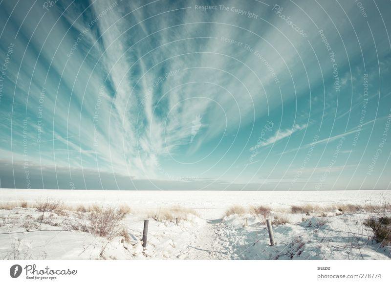 Schnee und Meer Umwelt Natur Landschaft Urelemente Luft Himmel Wolken Horizont Winter Klima Schönes Wetter Küste Strand Ostsee Wege & Pfade außergewöhnlich