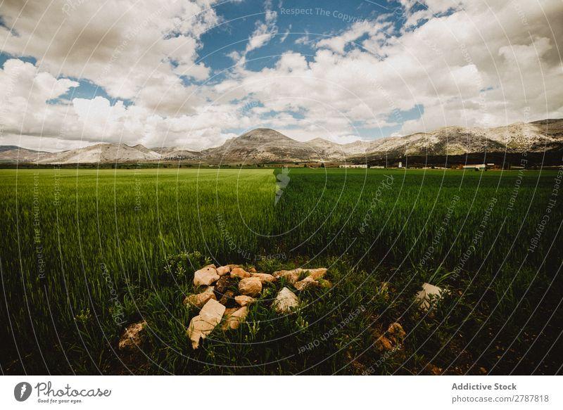Großes Feld und hohe Hügel bei bewölktem Wetter Wolken Wiese Gras Berge u. Gebirge Himmel blau grün Höhe Pflanze groß riesig pflanzlich Rasen Entwurf wunderbar