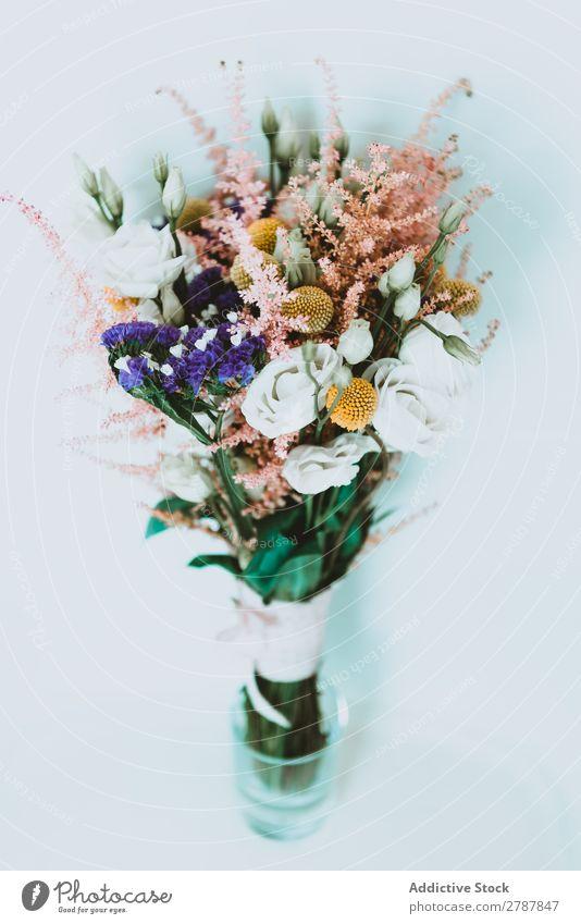 Blumenstrauß aus frischen Blumen Hochzeit aromatisch schön Pflanze