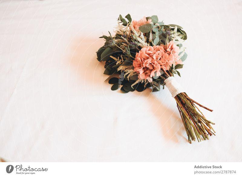 Blumenstrauß aus frischen Blumen Valentinsgruß Hochzeit hochzeitlich Haufen aromatisch schön Pflanze geblümt Dekoration & Verzierung Blüte natürlich romantisch