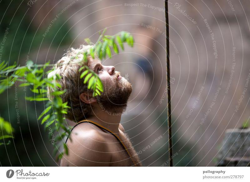 safety buddy Mensch maskulin Junger Mann Jugendliche Erwachsene Leben 2 18-30 Jahre Natur Pflanze Sommer Schönes Wetter Sträucher Grünpflanze Wald Felsen