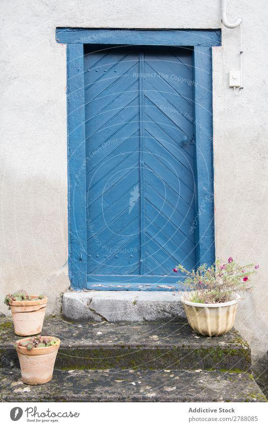 Gebäude mit blauer Tür und Blumen auf der Treppe Schritt Pyrenäen Konstruktion Topf weiß Fassade alt Pflanze Stein Ferien & Urlaub & Reisen Straße schön