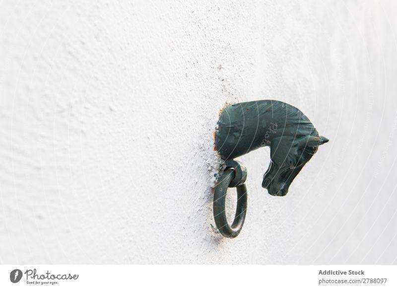 Ornamentfigur des Pferdes auf weißer Wand Figur Pyrenäen Gebäude Dekoration & Verzierung Ring Stein schwarz Schritt Konstruktion Fassade alt Straße Kalkstein