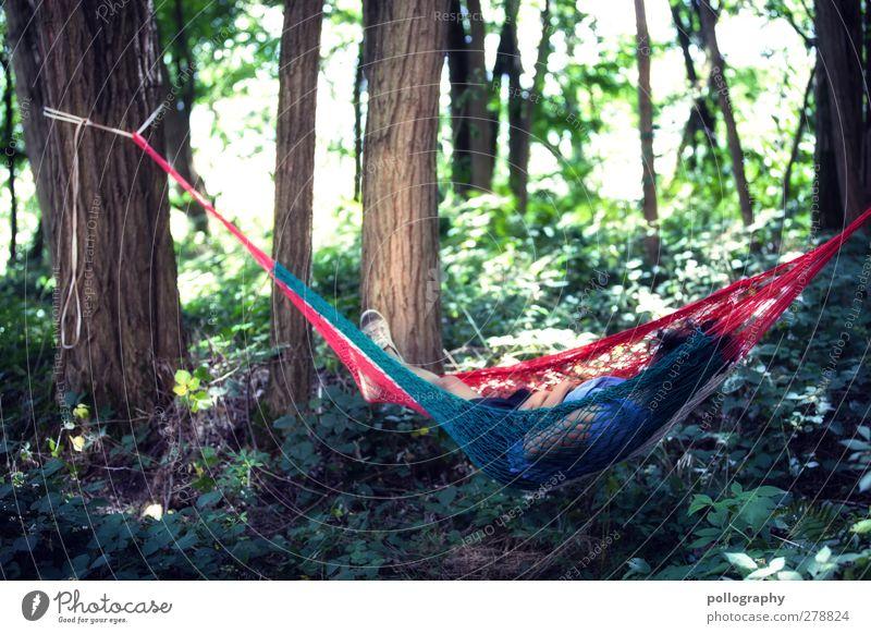 endlich mal bissel ruhe Mensch Natur Jugendliche Sommer Baum Pflanze rot ruhig Erwachsene Wald Erholung Landschaft Umwelt feminin Leben 18-30 Jahre