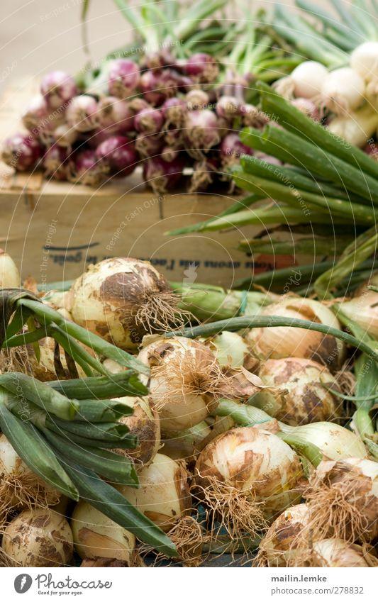 französischer Markt grün weiß violett Frankreich Zwiebel