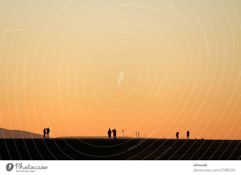 Menschen am Horizont Landschaft ruhig Ferne Erwachsene Leben feminin Freiheit Ausflug maskulin Luft Kraft Abenteuer Perspektive Zukunft Ewigkeit