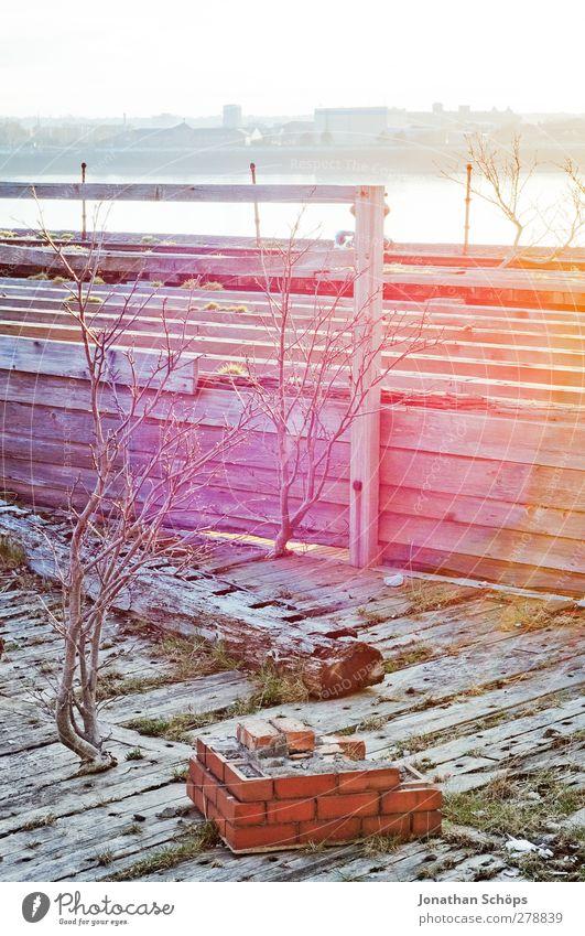 Lichtblick Hafen ästhetisch Zufriedenheit Backstein Holz Dock Liverpool Horizont Sträucher kahl Holzbrett rosa Lichterscheinung Färbung verfallen alt