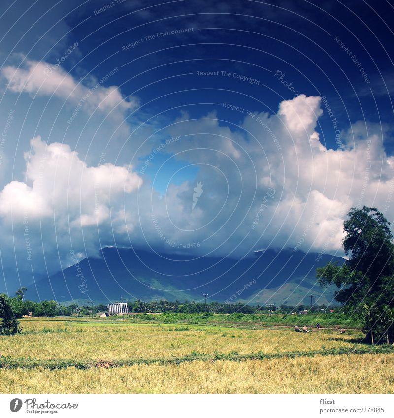 Wolkendecke Himmel Sommer Landschaft Berge u. Gebirge Feld Schönes Wetter Nervosität Vietnam
