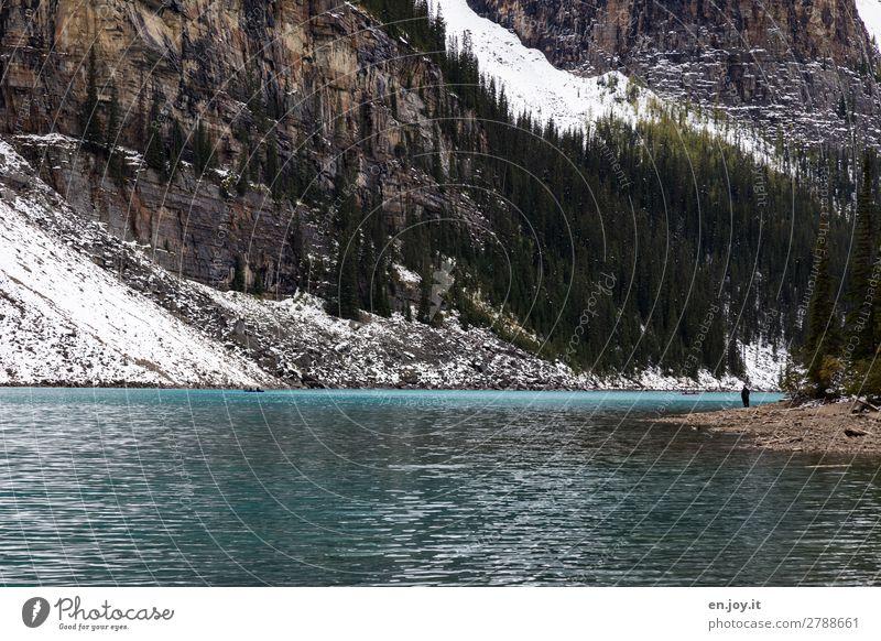 Randerscheinung Mensch Ferien & Urlaub & Reisen Natur Landschaft Einsamkeit ruhig Wald Berge u. Gebirge Gesundheit Herbst kalt Schnee Glück Tourismus See Felsen