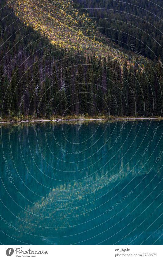 Wasserrutsche Ferien & Urlaub & Reisen Natur Landschaft Wald Herbst See Hügel Seeufer türkis Kanada Berghang Gebirgssee Nordamerika British Columbia
