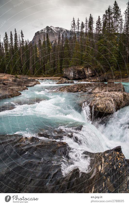 Natural Bridge Ferien & Urlaub & Reisen Landschaft Wasser Gewitterwolken Herbst Klima Klimawandel Wald Felsen Berge u. Gebirge Fluss Wasserfall Natural Bridges