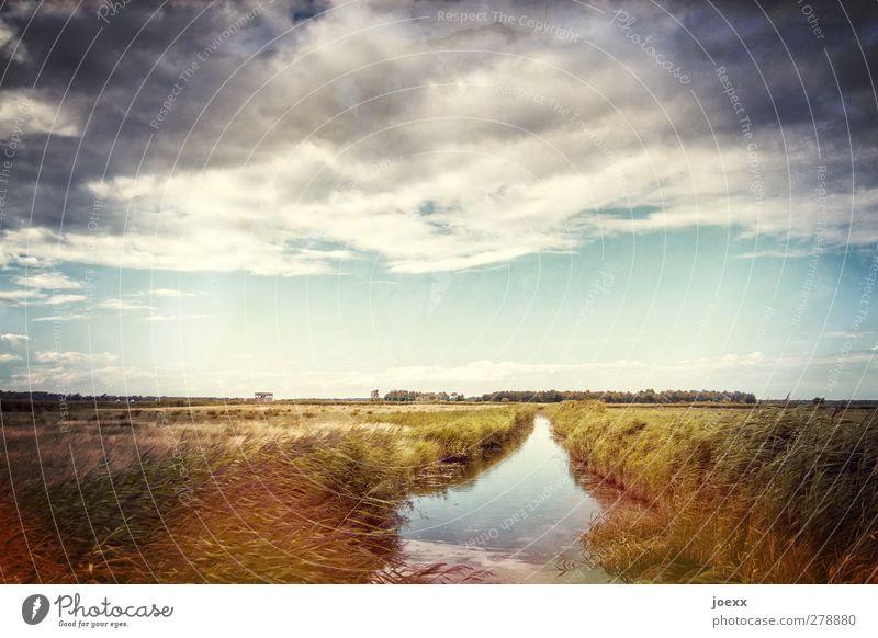 Wasserader Himmel Natur blau Wasser grün Sommer Wolken ruhig Landschaft grau Horizont braun orange Feld Schönes Wetter Idylle