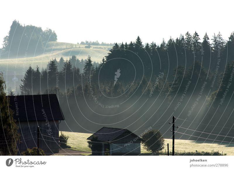 Morgenstund... Ferien & Urlaub & Reisen Wald Landschaft Berge u. Gebirge Herbst Frühling Denken Wellen Nebel wandern Tourismus frisch ästhetisch Schönes Wetter