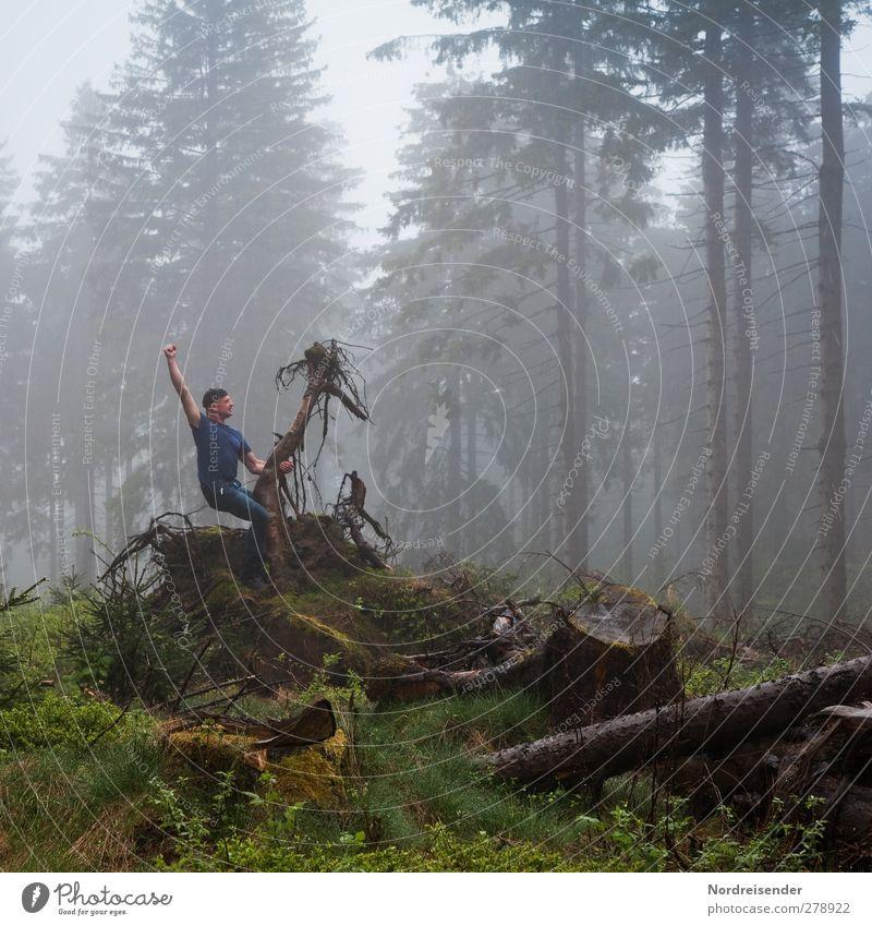 Gegenlichtnebel Mensch Natur Mann Freude Erwachsene Wald dunkel Sport Holz Zusammensein Regen Nebel Fröhlichkeit Coolness Fitness fantastisch