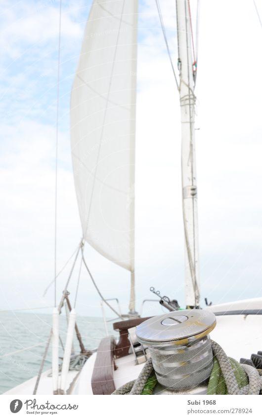 Sonne,Wind,Balaton! Segeln Wasser Horizont Sommer Schönes Wetter See Segelboot An Bord blau braun grau grün weiß Lebensfreude Abenteuer Freude Sport Farbfoto