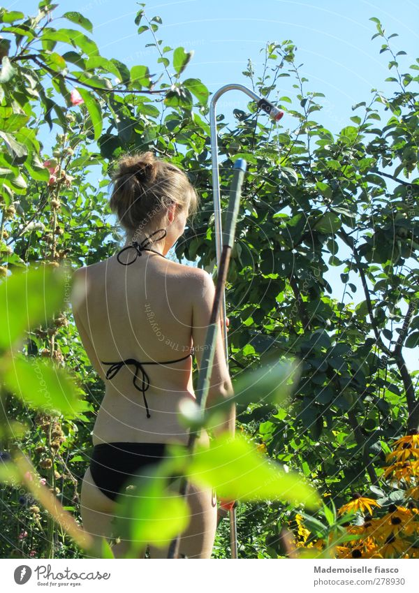 Sommer im Garten feminin Junge Frau Jugendliche Körper 1 Mensch Pflanze Schönes Wetter Sträucher Bikini stehen nackt natürlich dünn Zufriedenheit Idylle