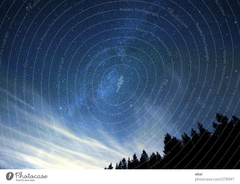 Sternwolken Wissenschaften Raumfahrt Natur Landschaft Pflanze Himmel Wolken Nachthimmel Horizont Sommer Wald blau schwarz weiß kalt Galaxie Cirrus Fichtenwald