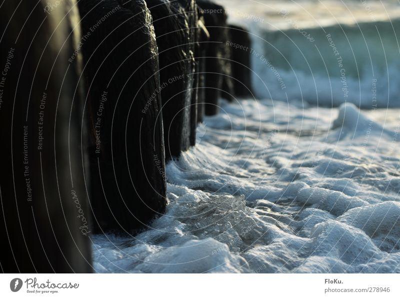 umspülte Buhnen Umwelt Natur Urelemente Wasser Wellen Küste Strand Nordsee Meer Holz glänzend nass wild blau weiß Sylt Brandung Farbfoto Außenaufnahme