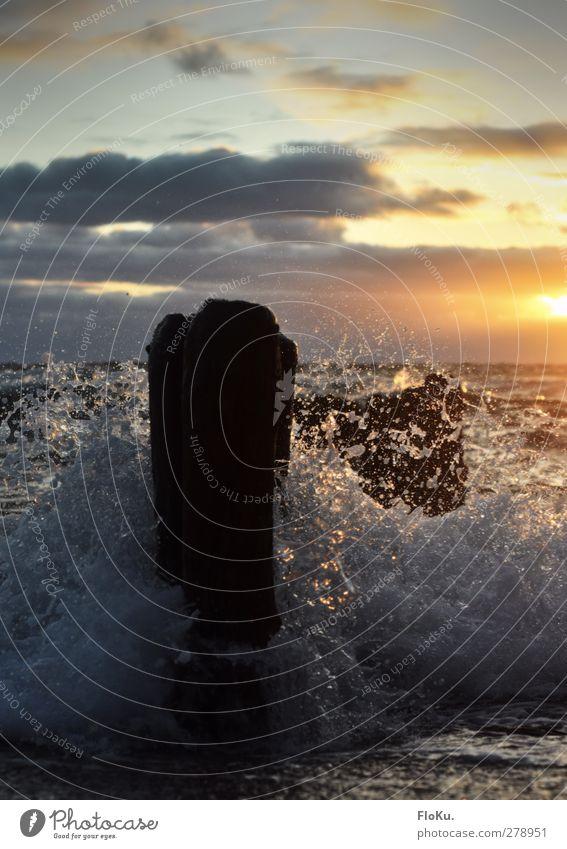 Nordsee Brandung Umwelt Natur Urelemente Wasser Wassertropfen Sonne Sonnenaufgang Sonnenuntergang Sonnenlicht Wellen Küste Strand Meer Holz Aggression