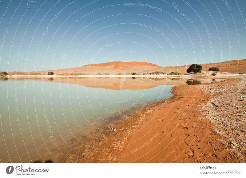 Wannenrand Natur blau Baum rot Einsamkeit Landschaft Ferne Umwelt Leben Sand See Wüste Seeufer Stranddüne Düne Wolkenloser Himmel