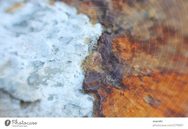 Küstenlandschaft Natur Landschaft Urelemente Erde Wasser blau braun Stein Färbung lensbaby Unschärfe Gegenteil Farbfoto Außenaufnahme Detailaufnahme