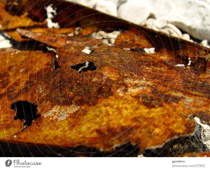 der zahn der zeit 1 Rost Blech Eisen Loch Zeit zeitlos Dose Flußbett Makroaufnahme Nahaufnahme alt Metall verfallen Wasser