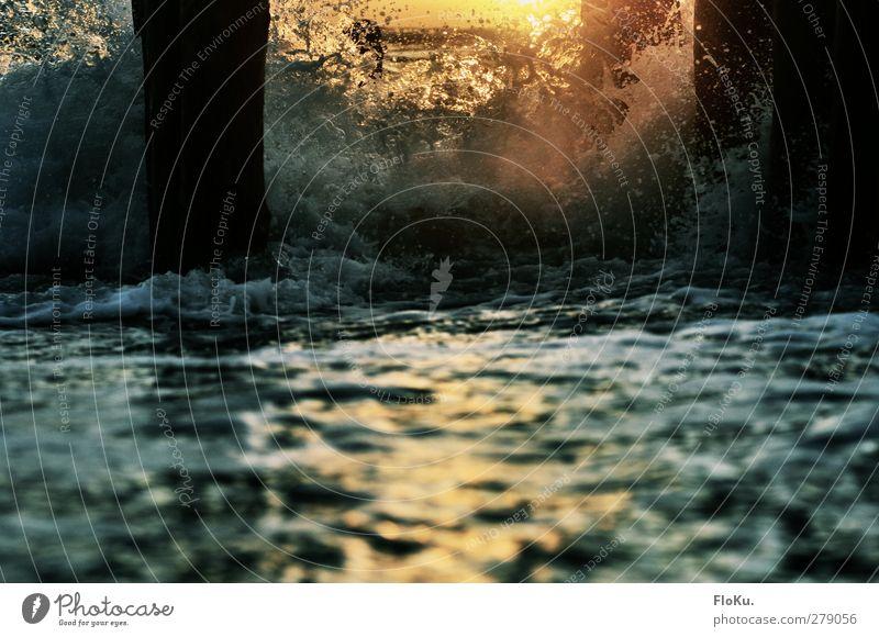 Buhnen in der Brandung Natur blau Wasser Ferien & Urlaub & Reisen Sonne Meer Strand Umwelt Holz Küste orange Wellen glänzend nass Wassertropfen Urelemente