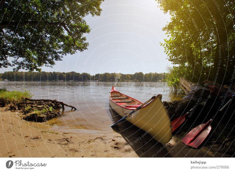 gestrandet Lifestyle Freizeit & Hobby Umwelt Natur Landschaft Wasser Wolkenloser Himmel Horizont Sommer Schönes Wetter Baum See Fluss Sauberkeit ruhig Kanu