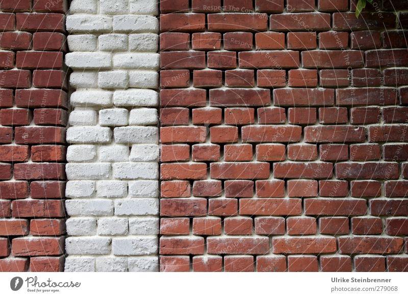 Brickwall alt weiß rot Haus Wand Senior Mauer Gebäude Sand braun Kraft glänzend stehen leuchten Sicherheit Schutz