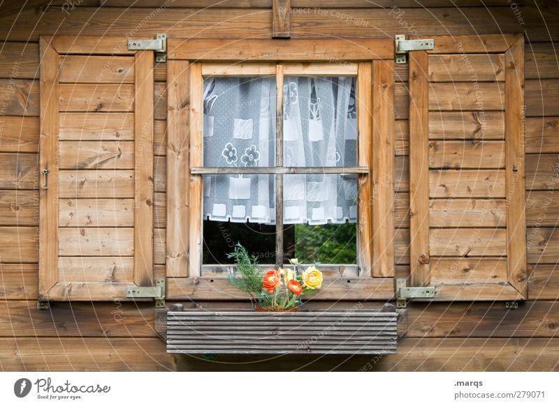 Heimat Schwarzwaldhaus Wohnung Blume Fassade Fenster Fensterscheibe Fensterladen Gardine Holz alt schön Geborgenheit heimatlich Nostalgie Bauernhof Farbfoto