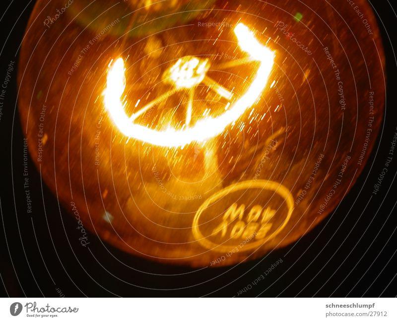 Glühbirne Draht Lampe Licht Elektrisches Gerät Technik & Technologie Detailaufnahme Makroaufnahme