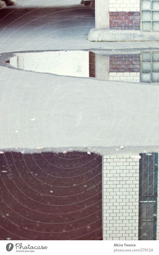 Spiegelboden Stadt Haus Gebäude Mauer Wand Fassade Fenster Beton Glas Backstein Wasser Häusliches Leben alt kalt grau grün rot weiß Einsamkeit Pfütze Farbfoto