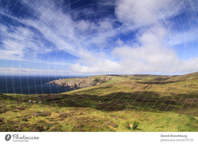 """""""Irland pur"""" Ferien & Urlaub & Reisen Abenteuer Meer Insel Berge u. Gebirge wandern Natur Landschaft Wasser Himmel Wolken Frühling Sommer Herbst Schönes Wetter"""
