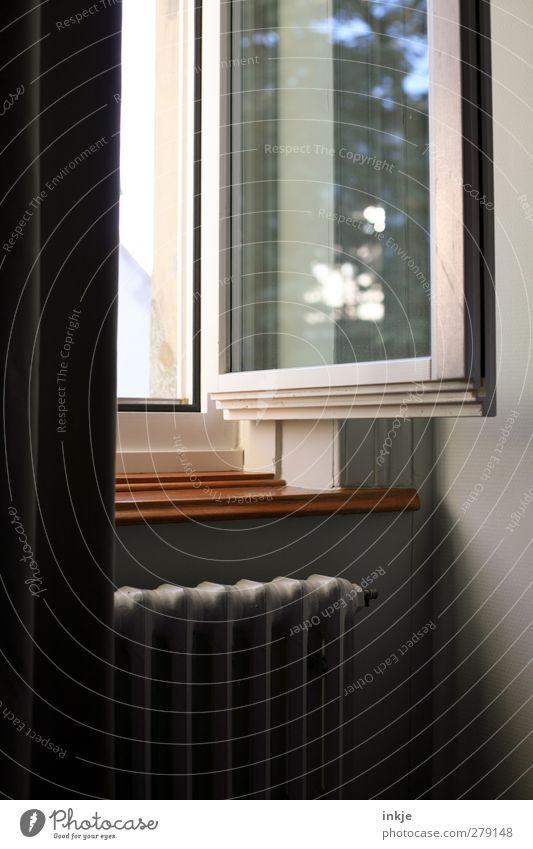 guten Morgen, Tag Häusliches Leben Raum Holzfenster Heizkörper Fensterbrett Gardine Vorhang hell schön Gefühle Leichtigkeit ruhig offen lüften Farbfoto