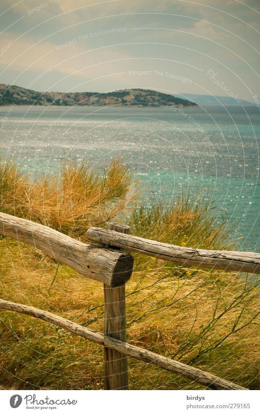 Inselromantik Natur blau Ferien & Urlaub & Reisen Sommer Pflanze Meer ruhig Landschaft gelb Wärme Küste natürlich authentisch Idylle Freundlichkeit
