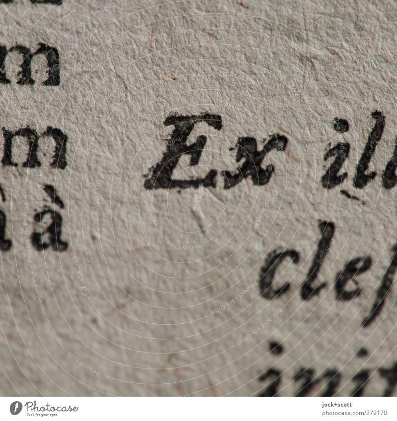 Präfix alt Kunst authentisch ästhetisch Papier lesen Buchstaben historisch rein dünn Bildung Vergangenheit nah Tradition Inspiration Originalität