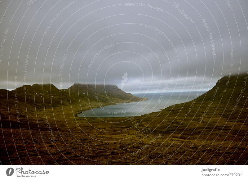Island Umwelt Natur Landschaft Wasser Wolken Klima Felsen Küste Fjord Westfjord außergewöhnlich dunkel natürlich wild Stimmung Farbfoto Gedeckte Farben