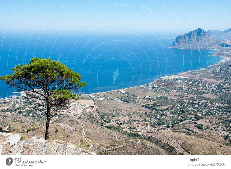 Baumgrenze Natur blau Wasser grün Pflanze Baum Meer Tier Einsamkeit Erholung Landschaft Umwelt Berge u. Gebirge braun Felsen Erde