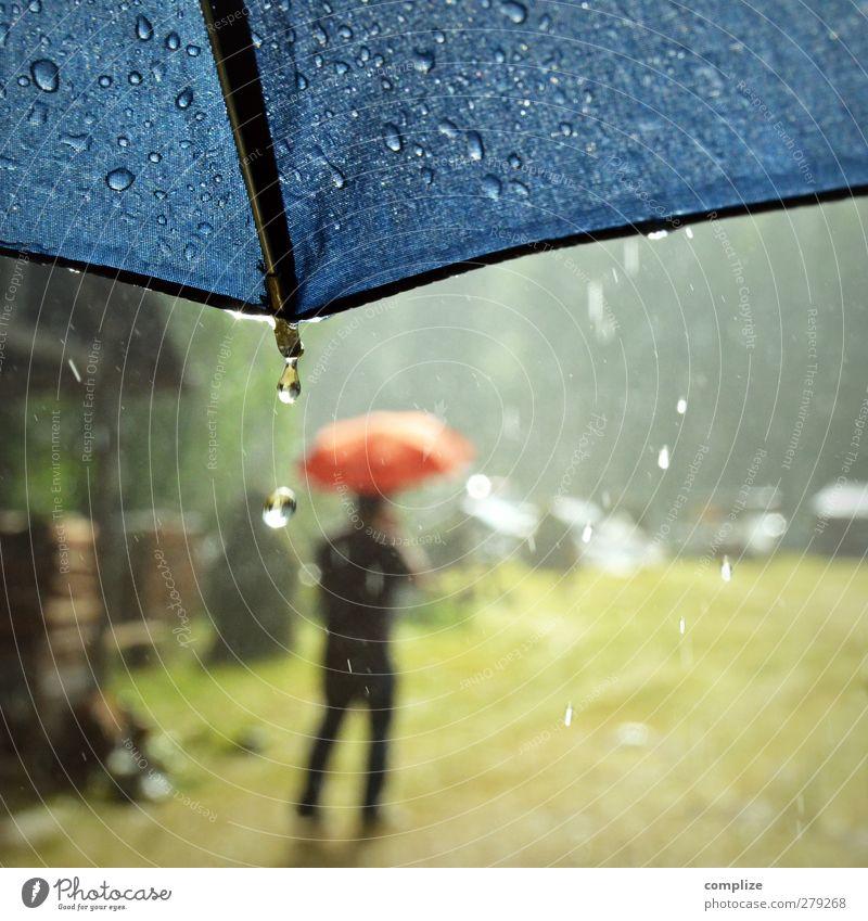 Sommerregen Jugendliche blau Wasser Sommer rot Sonne Wiese Wege & Pfade Junger Mann laufen Ausflug Wassertropfen Urelemente Tropfen Regenschirm Gewitter
