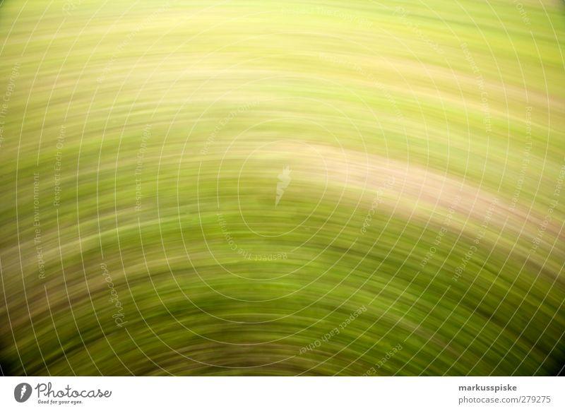 greendrive Umwelt Landschaft Pflanze Tier Urelemente Erde Frühling Sommer Herbst Baum Blume Gras Sträucher Farn Grünpflanze Wiese Feld Drehung drehen