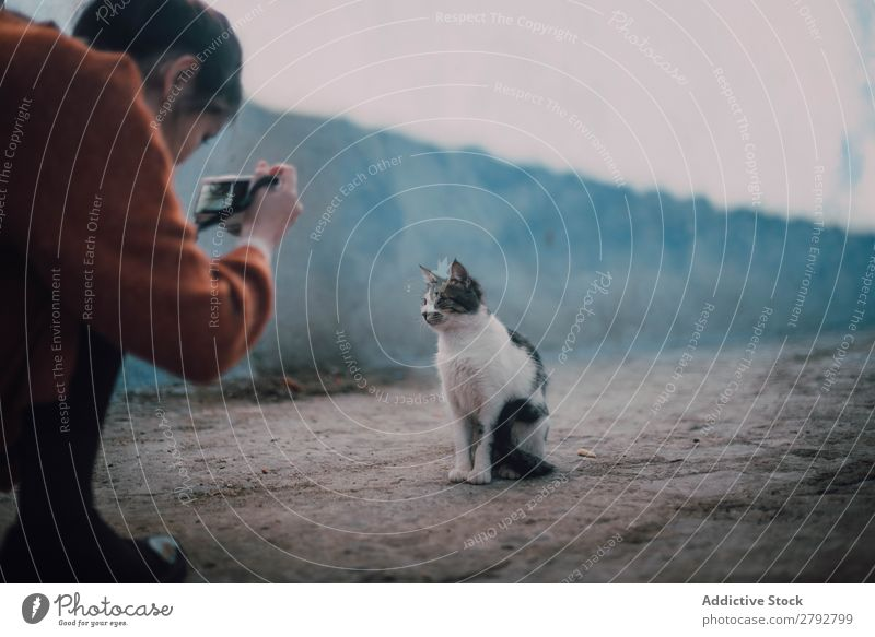 Frau beim Fotografieren einer obdachlosen Katze Straße Fotokamera professionell Tier