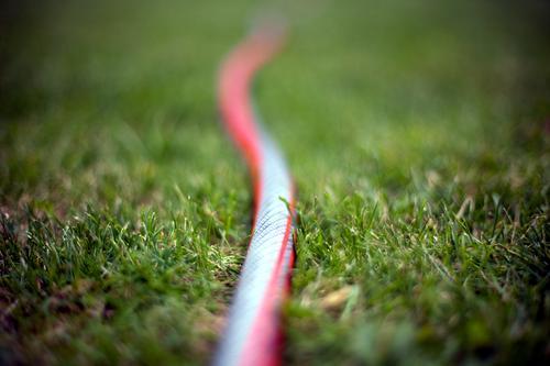 Leben im Kleingarten ist echt spannend... grün Sommer rot Wiese Gras Garten liegen nah lang Gartenarbeit Schlangenlinie Gartenschlauch Bewässerung