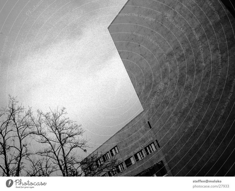 Berlin 2002 Tiergarten Mauer Brandmauer Haus Fenster Stadt Neubau Putz Fassade Wolken grau trist taumeln Architektur Deutschland Ländervertretung Stein Himmel